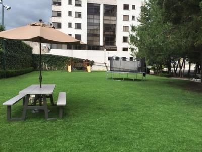 Renta Departamento Amueblado Vista Alta (opción Sin Amueblar)