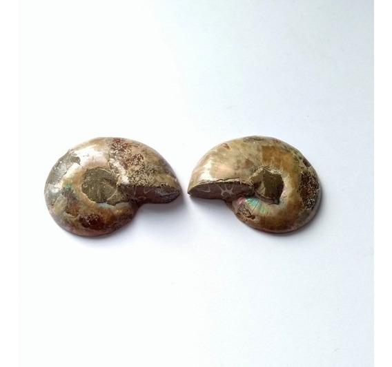 Amonita Iridiscente Natural Biseccionada Y Pulida 3.35cm