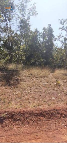 Terreno À Venda 31,5 Alqueires Por R$ 1.000.000 - Rural - Estrela Do Norte/go - Te0620