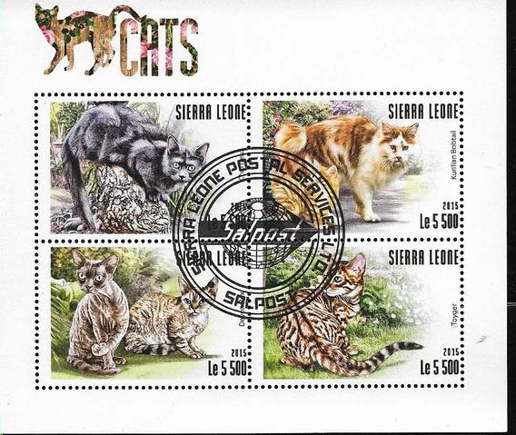 Minihoja Nr 152 Sierra Leona 2015 Fauna Gatos Domesticos