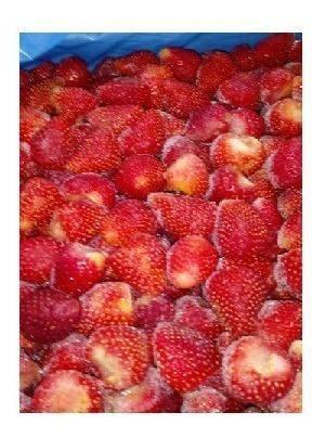 Frutillas Enteras Congeladas Iqf Mataderos
