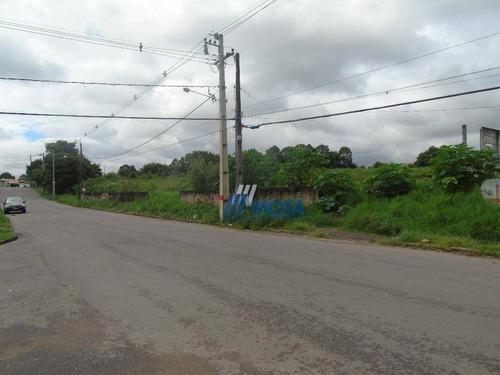 Terreno À Venda, 2446 M² Por R$ 750.000,00 - Rio Pequeno - São José Dos Pinhais/pr - Te0164