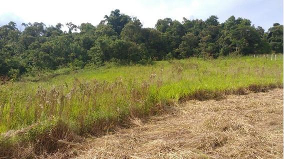 Terreno Em Mairinque Sp. Venha Relaxar, Curtir A Natureza.!
