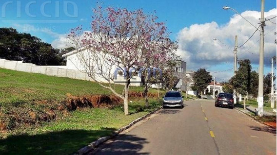 Terreno - Chacara Sao Felix - Ref: 3072 - V-te0558