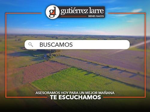 Buscamos Campos En Zona Sur, Uruguay. Solicitudes Inmediatas