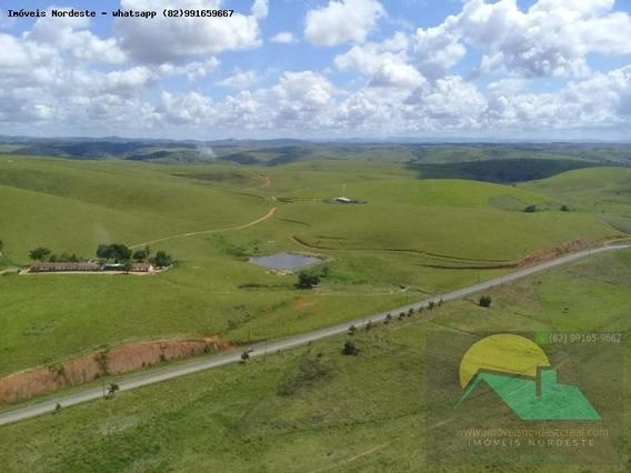 Fazenda Para Venda Em Novo Lino, Zona Rural - Fz-048