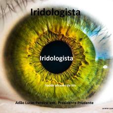 Consultas Iridologista Saude Vista Pela Iris Dos Olhos