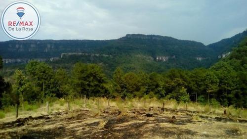 Rancho Agricola Y Forestal En Venta Pueblo Nuevo Dgo.