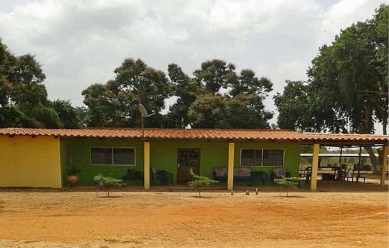 Finca En Venta Municipio Aguasay Estado Monagas