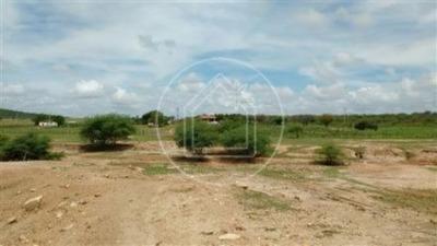 Sitio - Centro - Ref: 319 - V-805170