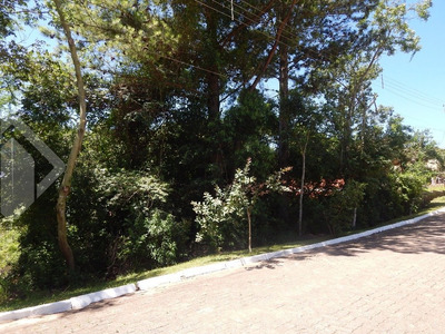 Terreno - Cantegril - Ref: 209509 - V-209509