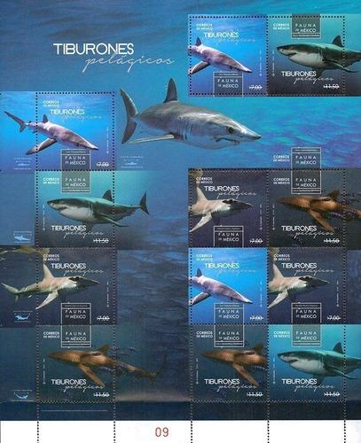 Imagen 1 de 1 de Mexico 2016 Tiburones Hoja De 12 Timbres Mint Rara Foto Fi