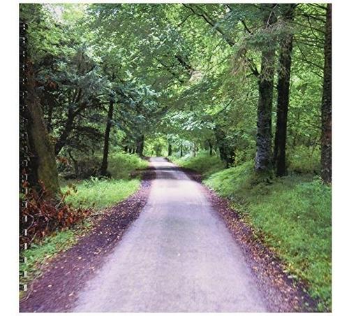 Danita Delimont  Caminos  Irlanda Parque Nacional De Killarn
