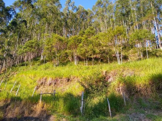 Venda Fazenda São Luiz Do Paraitinga Brasil - 4087