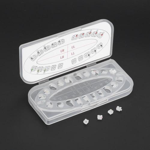 Ortodoncia Dental Invisable Ortodoncia Ortho Braces Mini