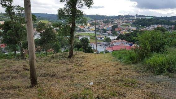 Terreno Residencial À Venda, Centro (caucaia Do Alto), Cotia. - Te0104