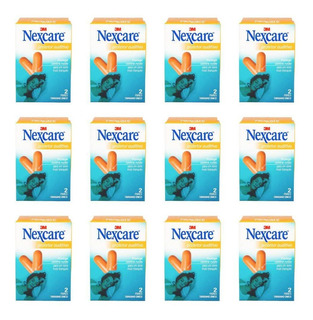 3m Nexcare Protetor Auditivo C/2 Pares (kit C/12)