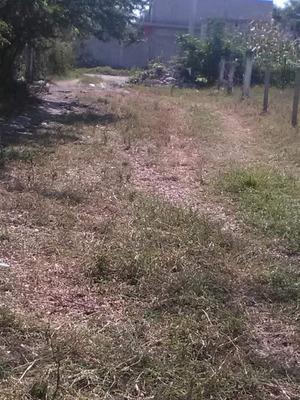 Venta De Terrenos En Los Alrededores De Cuautla