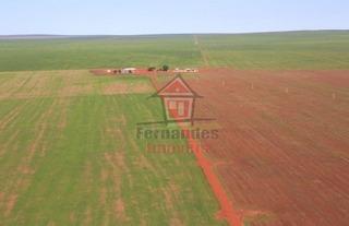 Fazenda Rural À Venda, Zona Rural, Primavera Do Leste - Fa0155. - Fa0155