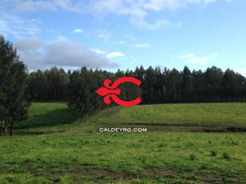Campo En Maldonado Ref. 4536