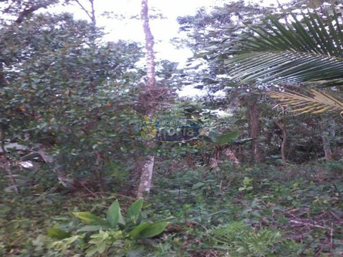 Imagem 1 de 8 de Terreno No Royal Parque - 6153