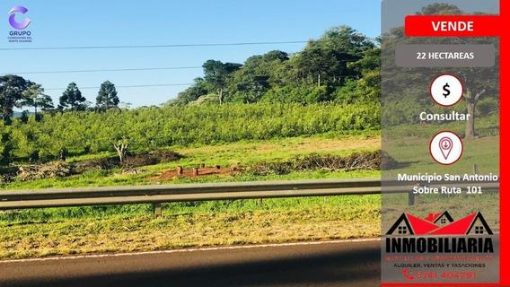 22 Hectáreas - Yerba - Tajamares - Sobre Ruta 101 - Chacra -