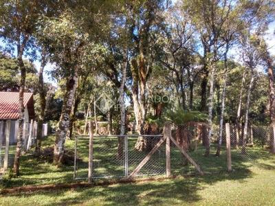 Terreno - Centro - Ref: 288480 - V-288480