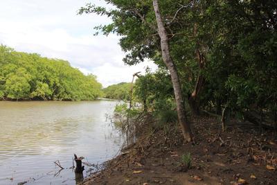 Terreno En Venta En Punta Chame 19-355 Emb