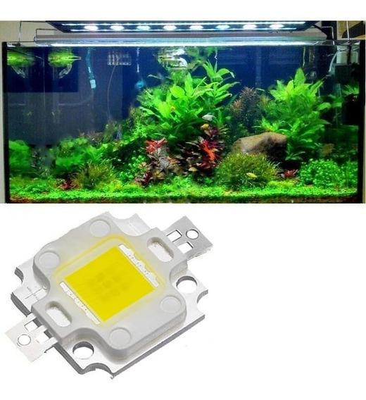 5 Super Power Led 10w 10000k Branco Frio Aquario Refletor