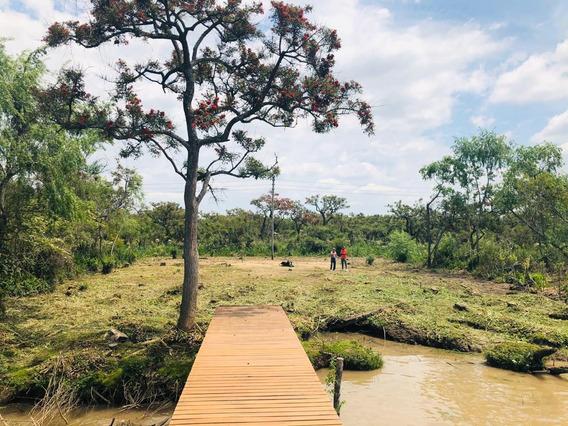 Venta De Terreno Delta Tigre Canal Honda Con Muelle Nuevo
