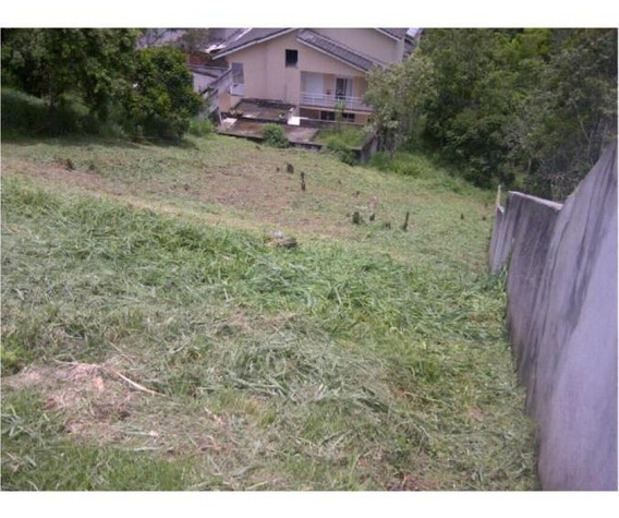 Terreno Para Venda Em Arujá, Jardim Imperial Hills Iii - 1816_2-841629