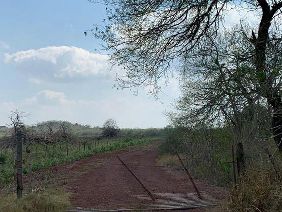 Terreno En Venta Mante, Tamps.