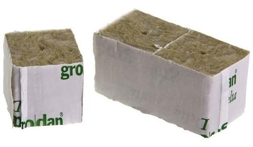 Lana Roca Germinación Esquejes Cultilene Plug 4x4cm X 10 U