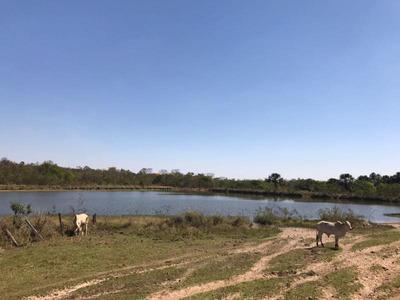 Fazenda Para Venda Em Aporé, Centro - 1097