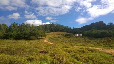 Sítio Para Comprar No Zona Rural Em Nepomuceno/mg - Nep444