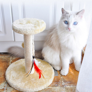 Mascota Gato Muebles Cama Árbol Rascador Casa Mascota Para G