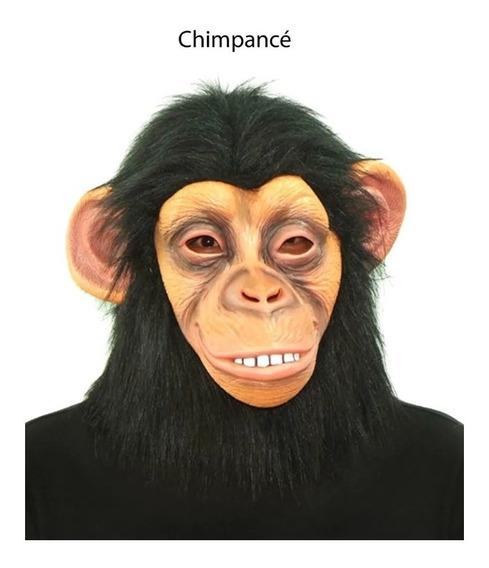 Máscara Chimpancé Mono Bruno Mars 100% Látex