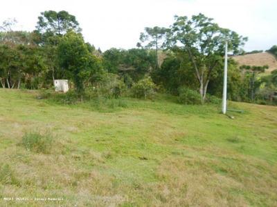Chácara Condomínio A Venda Em Bocaiúva Do Sul, Jacaré - 300
