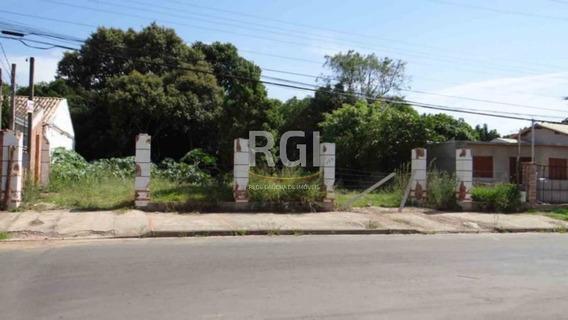 Terreno Em Santa Isabel - Mf21858