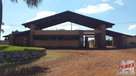Chácaras_sítios_fazendas Para Venda - 13650.2754