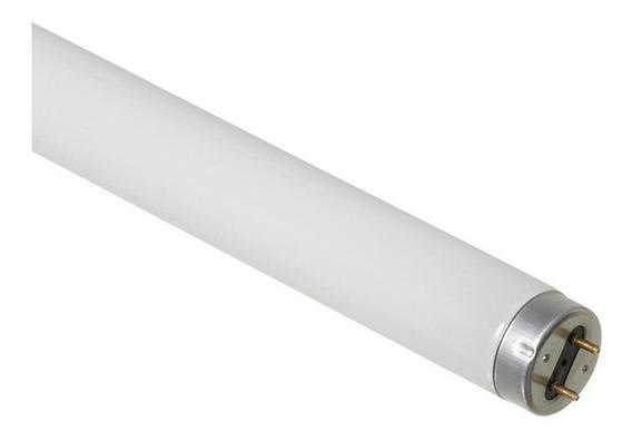 Lâmpada Fluorescente Tubular T10 20w 6500k 60cm Basic Osram