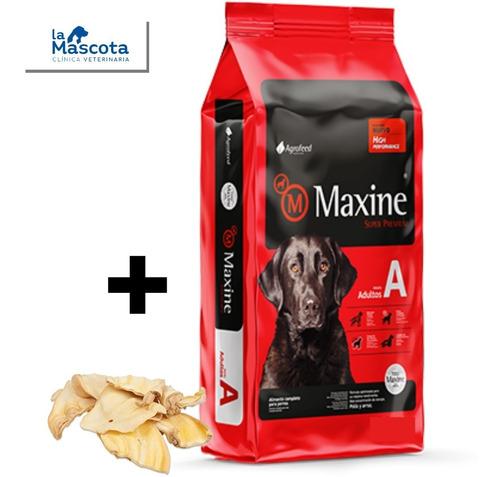 Imagen 1 de 4 de Maxine Adulto 21 + Regalos + Envio. + Pagos. Comida Perros