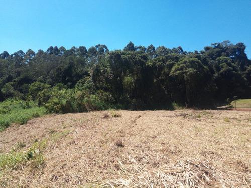 Vendo Terreno Plaino E Limpo   Lote Plaino Com 1000 M²