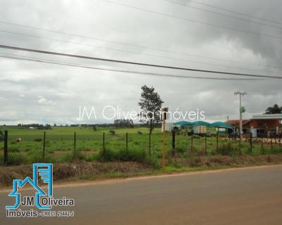 Terreno Venda Em Holambra Sp - 113