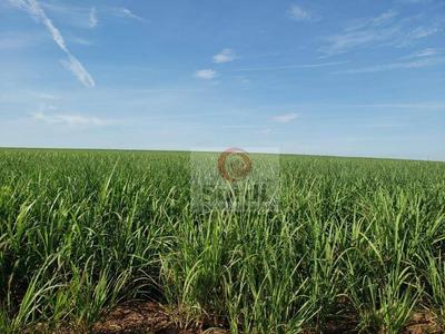 Fazenda À Venda, 2274800 M² Por R$ 21.000.000 - Zona Rural - Jardinópolis/sp - Fa0087