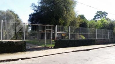 Terreno - Centro - Ref: 167474 - V-167474