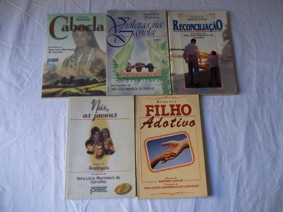Lote 14 Livros Vera Lucia Marinzeck De Carvalho