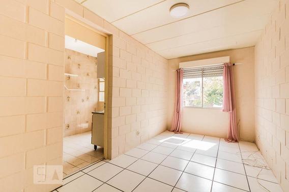 Apartamento Para Aluguel - Vila Nova, 1 Quarto, 42 - 893009527