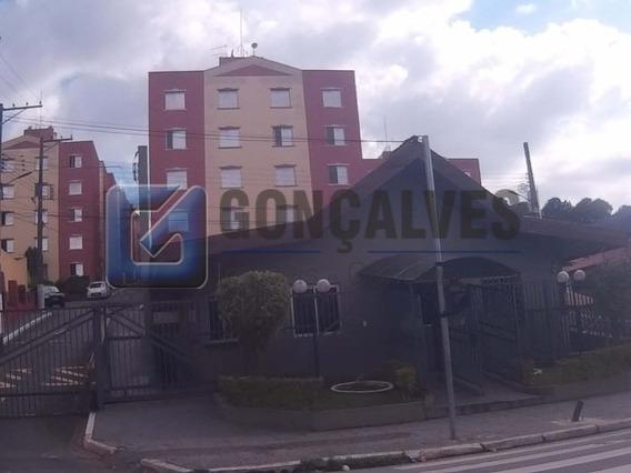 Locação Apartamento Sao Bernardo Do Campo Baeta Neves Ref: 1 - 1033-2-13398