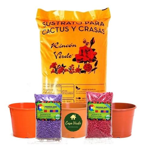 Super Combo Cactus Suculenta Sustrato+pedritas+4 Macetas N12
